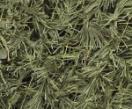 Маскировочная сеть 2мх3м ПС5-3 Папоротник хвоя - купить по доступной цене